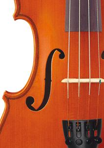 Bild för kategori Stråkinstrument