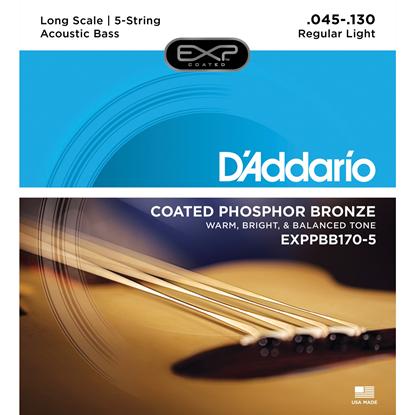 Bild på D'Addario Strängset Akustisk Bas EXPPBB170-5