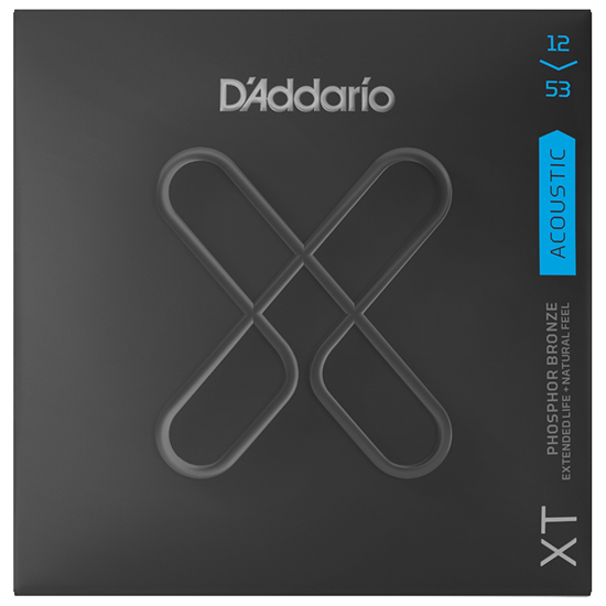D'Addario XTAPB1253 Regular Light