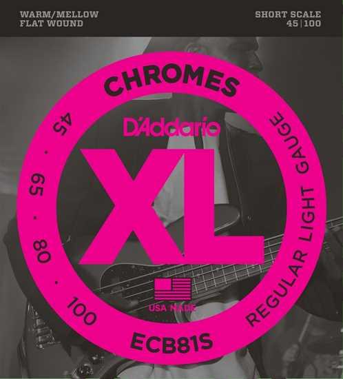 Bild på DAddario ECB81S Chromes