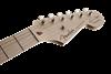Bild på Fender Eric Clapton Stratocaster® Maple Fingerboard Black